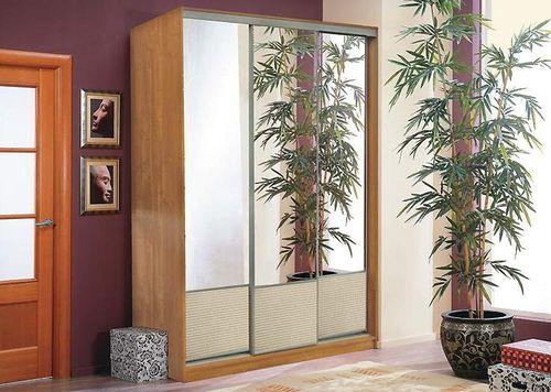 zerkalo-naprotiv-vhodnoj-dveri_2